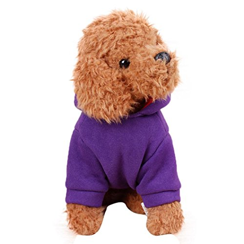 [Puppy Clothes,Neartime Winter Jacket Coat Vest Doggy Sweater Hoodie Devil Apparel (XL, Purple)] (Devil Girl Outfit)
