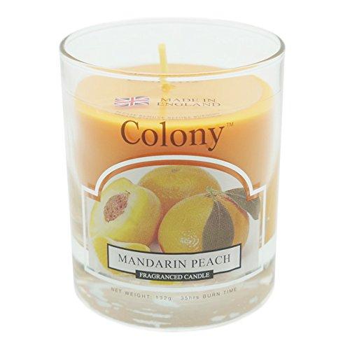 Colony Tumbler Candle - Small (Mandarin Peach)