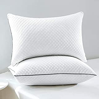 """GOHOME Bed Pillows for Sleeping 2 Pack, Soft Standard Pillows with Luxury Velvet Fabric, Full Size Pillows with Down Alternative Fiber Fill for Side and Back Sleepers, 20""""x26"""""""