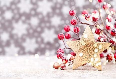 Christmas Background Portrait.Amazon Com Leowefowa Vinyl 10x8ft Merry Christmas Backdrop