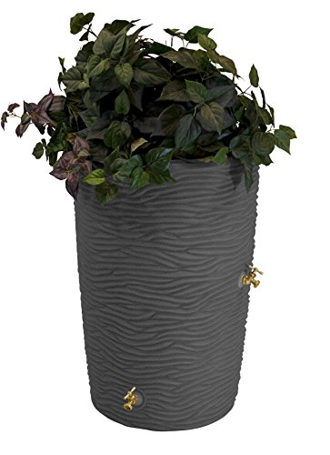 Rainwater Harvesting Barrel - Good Ideas IMP-L50-DAR Impressions Palm Rain Barrel, 50-Gallon, Dark Granite