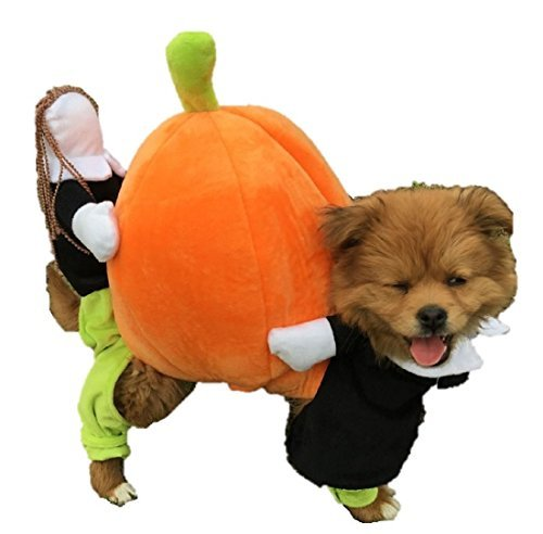 Horse Hood Riding Costume Little Red (ShonanCos Funny Dog Clothes Pumpkin Loaded Doll Dress (L (16.1