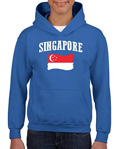 NIB Singapore Flag Traveler`s Gift Unisex Hoodie for Girls and Boys Youth Sweatshirt (LRB) -