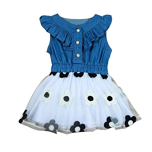 Leyeet 2pcs Baby Girl's Full Frilled Dot Broidery Flowers Frilled Sleeves Set Dress + Top (Color : White, Size : 120)