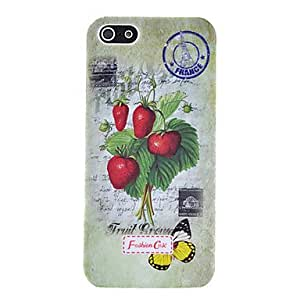 Retro Floral Series Fruit Pattern Plastic Case for iPhone 5/5S