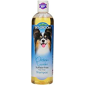 Bio-Groom DBB20012 Protein Lanolin Tearless Concentrate Small Pet Shampoo, 12-Ounce