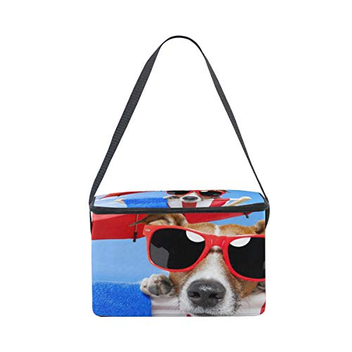 Strap Shoulder Lunchbox Bag Chair Sunbathing Cooler for Deck Picnic Dog On Lunch Fw4q1vg