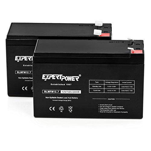 - ExpertPower Standard 12V 7AH Rechargeable SLA Battery, (EXP1270-2)