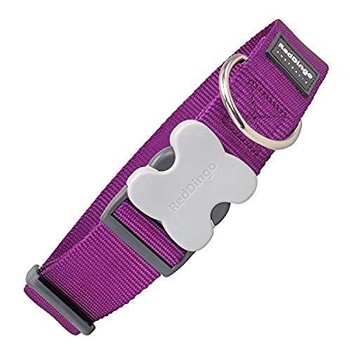 Red Dingo Classic Dog Collar, Giant Short, Purple