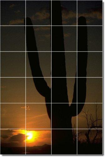 Deserts Photo Ceramic Tile Mural 29. 32x48 Inches Using (24) 8x8 ceramic tiles.