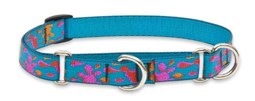 "LupinePet Originals 3/4"" Wet Paint 10-14"" Martingale Collar for Small Dogs"