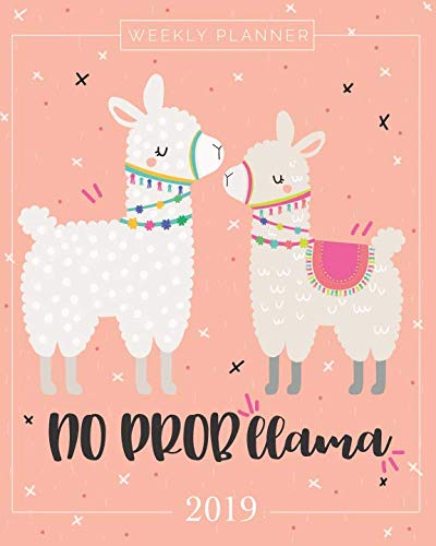Product picture for 2019 Planner Weekly And Monthly: Calendar Schedule + Organizer | Inspirational Quotes And Llama Lettering Cover | January 2019 through December 2019 by Pretty Simple Planners