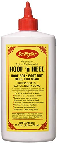 Dr. Naylor Hoof n' Heel (16 oz.) - Traditional Foot Rot Treatment