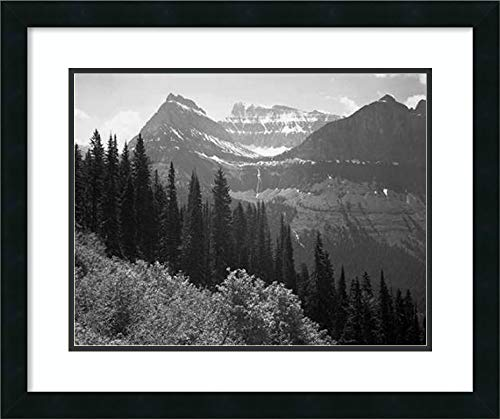 Amanti Art Trees, Bushes and Mountains, Glacier National Park, MT 1941 by Ansel Adams Framed Art Print