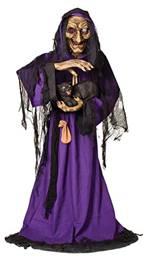 For Sale Matilda Costumes (MATILDA ANIMATED WITCH)