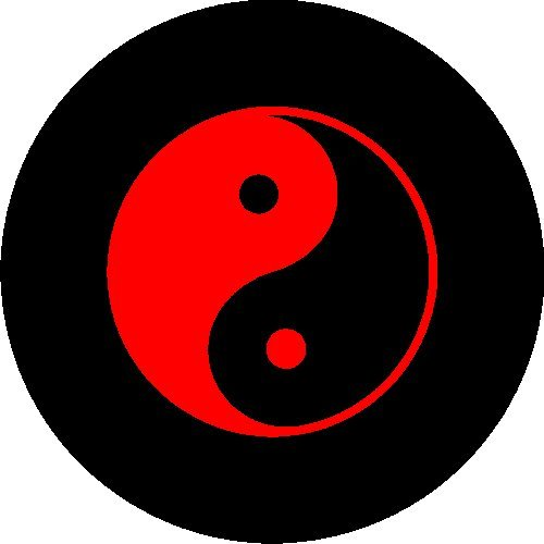 ying yang tire cover - 9