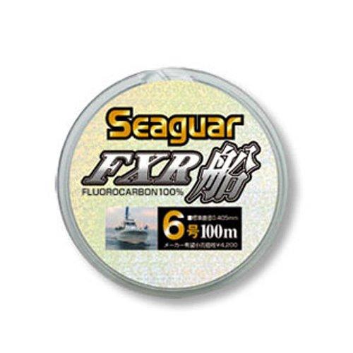NEW Seaguar FXR Boat 100m 8lb #2 Clear 0.235mm Fluorocarbon Leader Line Japan