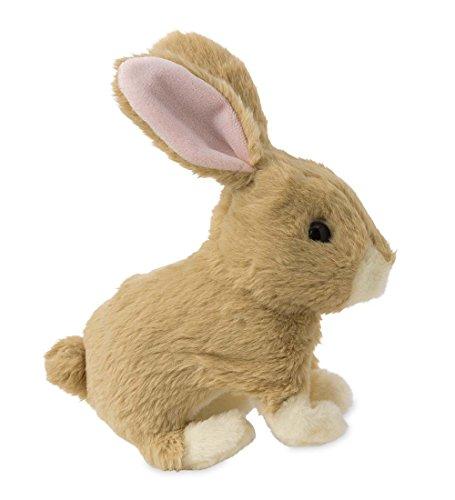 - Hopping Bunny