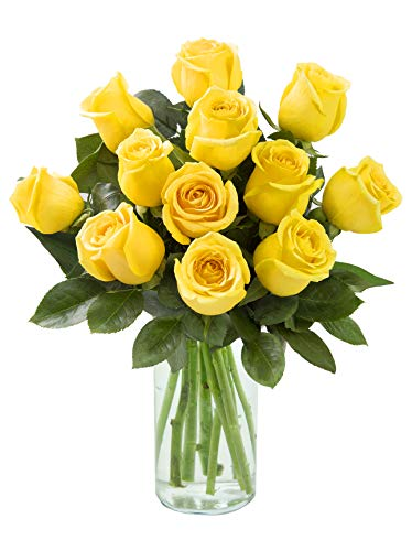 12 Fresh Cut Yellow Roses by Arabella Bouquets with Free Glass Vase | Purchase by Monday 10 am EST to get Deliver on Wednesday Before noon