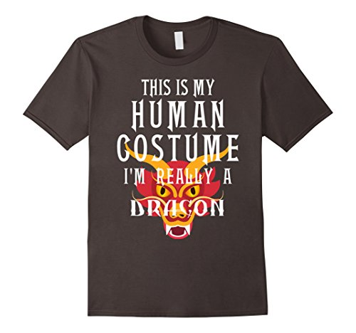 Mens I'm Really A Dragon Halloween Costume Easy Tee Funny T Shirt Small (10 Super Easy Last Minute Halloween Costumes)