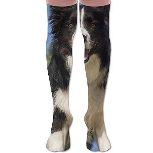 Full Vintage Wallpaper Border (Border Collie Women Knee High Socks High Thigh Stockings Over Knee High Boots Long Socks For Girls)