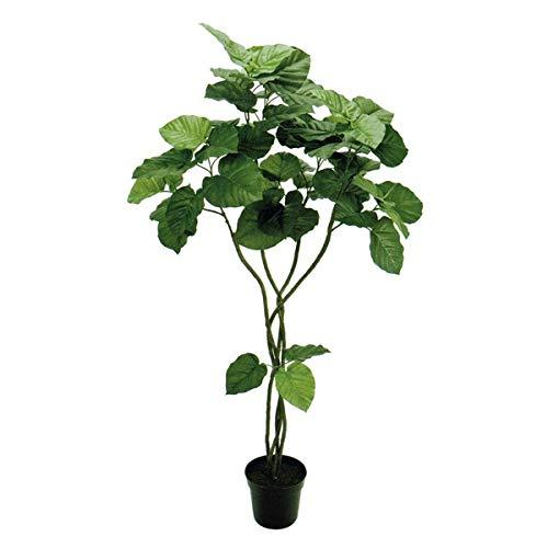 人工観葉植物 ウンベラータツイスト5F 高さ150cm fg5226 (代引き不可) インテリアグリーン 造花 B07SWQZ97R