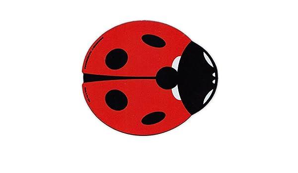 Imán para nevera, diseño de mariquita roja (texto en inglés