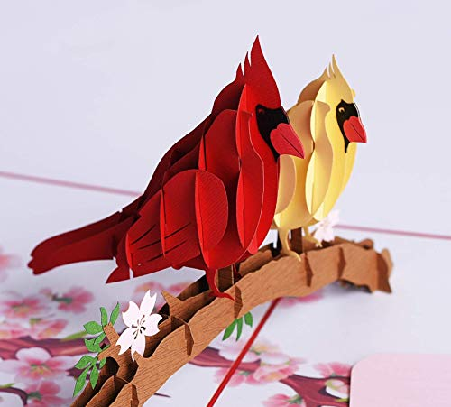 3D Popup Card of Cardinal Bird, Paper Art & Handicrafts, Greeting Cards, Handmade Gifts by PQDGlobal (Cardinal couple) (Couple Bird)