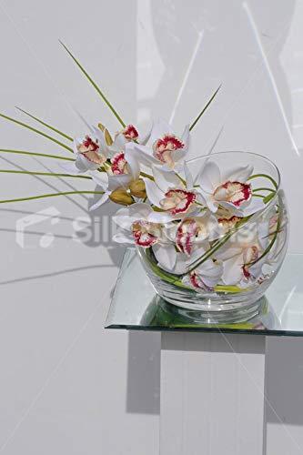 Silk Blooms Ltd - Orquídea Artificial con Forma de cimbidio Blanco y arreglo de Flores de