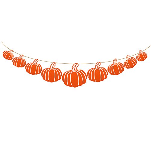 JANOU Pumpkin Banner Autumn Bunting Hanging Garland Flags for Thanksgiving Day Halloween Party Decoration