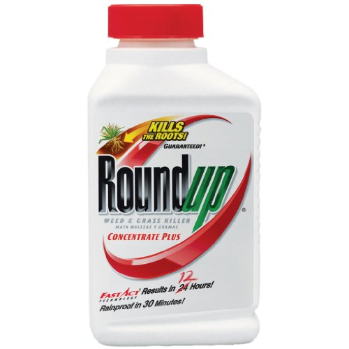 The Scotts Company-Scotts Roundup 16Oz 25% Conc Weed & Grass