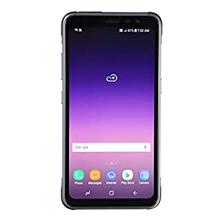 Samsung Galaxy S8 Active, 64GB, Meteor Gray - For AT&T / T-Mobile (Renewed)