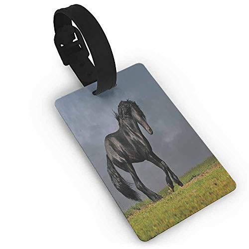 Travel luggage tag,Horse Decor,Black Friesian Stallion Gallop in Sunset Stormy Weather Nature Outdoors,Suitcase Travel ID Bag Green Black Grey