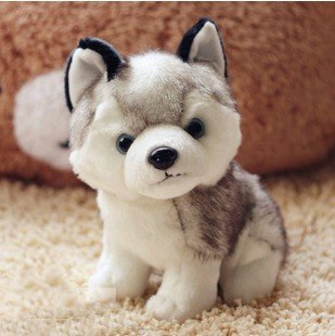 Huskie husky kawaii baby toy plush stuffed staff dog kids toys dogs bull brinquedos pelucias toy
