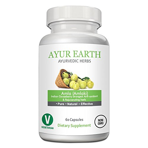 Fruit From India - Pure Amla Powder Capsules: Natural Antioxidant and Vitamin C Source, Immune System Booster, Raw Superfood, Ayurvedic Amlaki/Indian Gooseberry Fruit Extract Herb from India, 60 Veggie Capsules