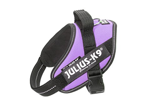 Julius-K9, 16IDC-PR-MM, IDC Powerharness, Dog Harness, Size: Mini-Mini, Purple