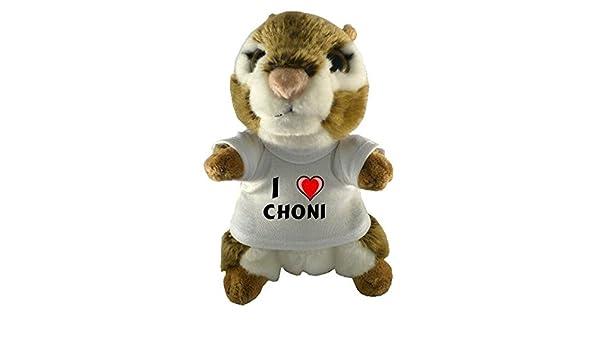Ardilla americana de peluche (juguete) con Amo Choni en la ...