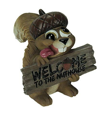 World Of Wonders Welcome to The Nuthouse Silly Squirrel Indoor Outdoor - Squirrel Welcome