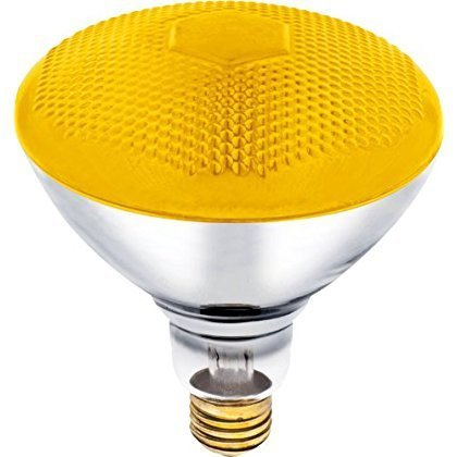 100 Watt Incandescent Flood Light Bulb in US - 1