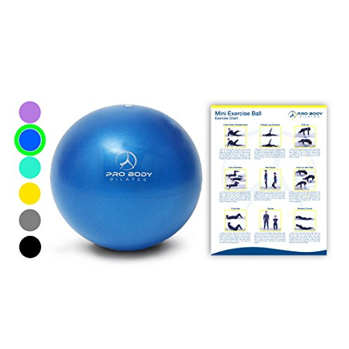 Mini Exercise Ball - 9 Inch Bender Ball for Stability, Barre, Pilates, Yoga, Core Training and Physical Therapy (Blue) ()