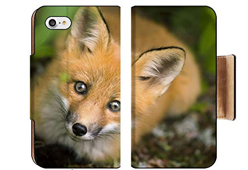 Luxlady Premium Apple iPhone 8 Flip Pu Wallet Case Wild red Fox from National Park Jacques Cartier Quebec Canada Image ID 5132648