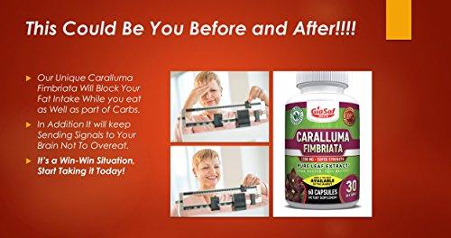 GiaSof-Health-Caralluma-Fimbriata-Extract-1200-MgSuper-Strength-Best-Weight-Loss-Pills-Lose-Weight-Fast-Fat-Carb-Blocker-Block-Fat-Intake-Build-Lean-Muscle-Free-Standard-Shipping