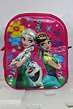 Barbie Disney Cinderella Frozen Dora Girl's Synthetic 15.5 X 12 X 22.5 Inches Anna and Elsa Sofia Pink School Bag Backpack