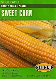 Sweet Corn Kandy Korn Hybrid Seeds -