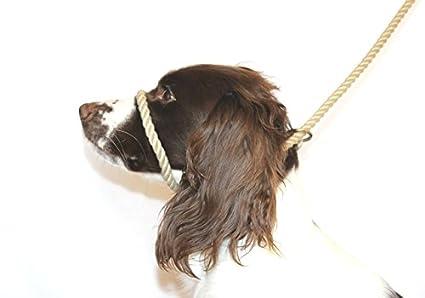 flexible Dog /& Field sin m/&aacu segura y probada para hacer tu paseos m/ás agradables fina instrucciones de montaje incluidas idioma espa/ñol no garantizado talla /única C/ómoda Cuerda anti arrastre de algod/ón suave