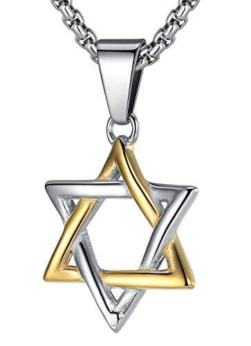 LineAve Stainless Steel Jewish Star of David Pendant Necklace, Unisex, 22