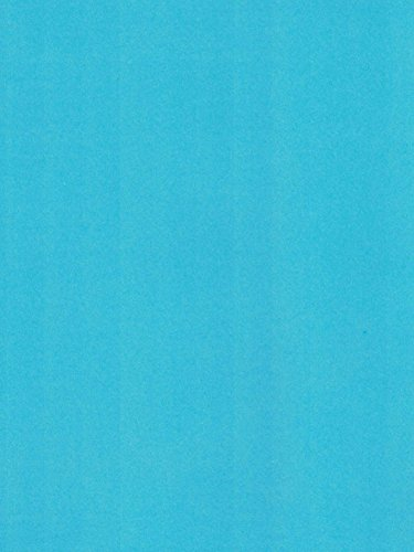 8.5x11 Carnation Blue Cardstock 67# lb. Cre8-a-Page Papers ()