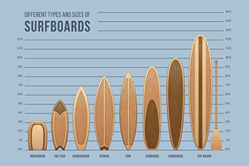 Surfboards Size and Type Chart Poster 12x18 - Of Types Surfboards