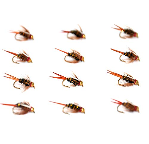 Outdoor Planet 12 Gold Bead Head Prince Nymph Trout Fly Lure Assotment for Wet Fly Fishing Flies