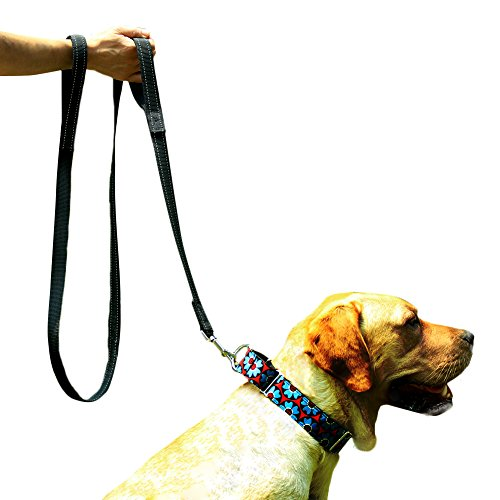 EXPAWLORER Double Handles Dog Training Leash 6 FT, Heavy Duty Padded Handle Lead for Traffic Safety Control, Perfect for Medium to Large Dog, Black